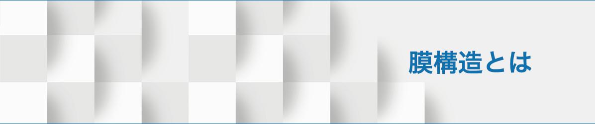 膜構造とはリンク画像
