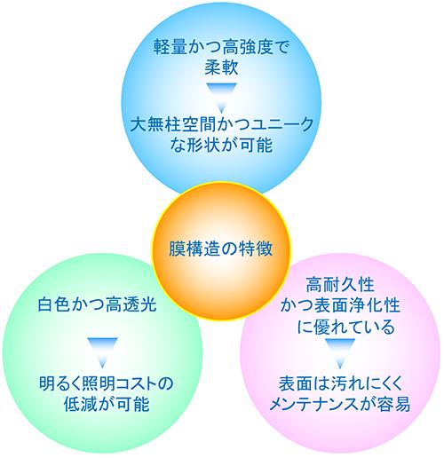 膜構造の特性